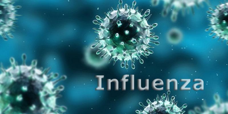 Understanding Seasonal Influenza – Part I