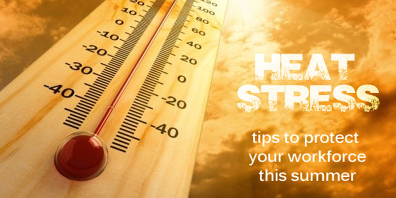 Heat Stress: Tips to Protect Your Workforce This Summer
