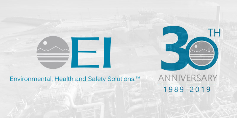 30 for 30: Thirty Ways We've Delivered Exceptional EHS Value Since 1989